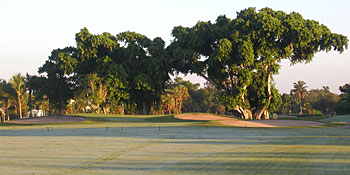 The Biltmore Hotel golf course