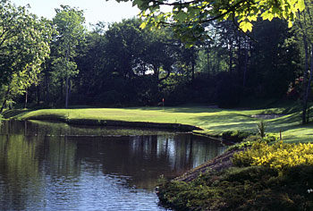 Druids Glen - 8th hole