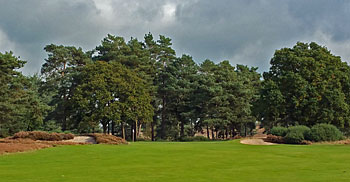Hankley Common - 15th hole