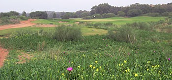 Mazagan Golf Morocco