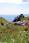 Click to find out why Steve is horizontal at Pennard