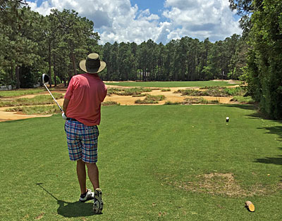 Pine Needles 17th