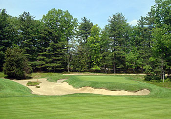 Pine Valley 8th hole - photo by Ian