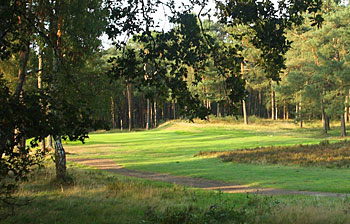 Rosendaelsche Golf Club - 7th hole