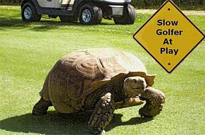 Slow golfers at play