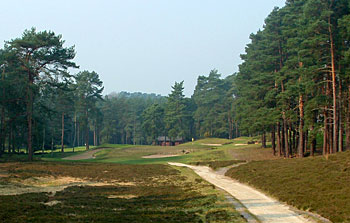 Sunningdale (New) - photo by Jim McCann