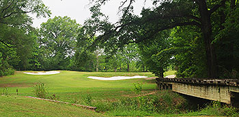 Black Bear Golf Course - Photo by reviewer