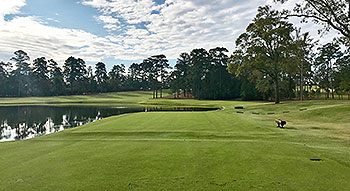 Bluejack National Golf Course - Photo by reviewer