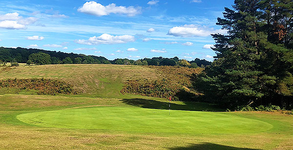 Bramshaw (Forest) Golf Course - 11th green