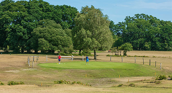 Bramshaw (Forest) Golf Course - 2nd green