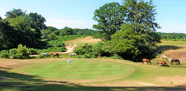 Bramshaw (Forest) Golf Course - 6th