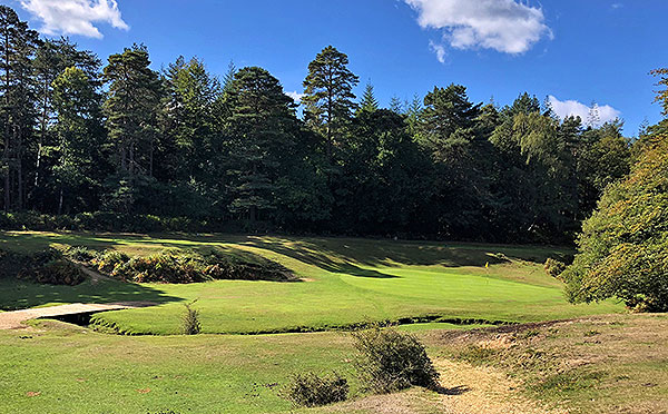 Bramshaw (Forest) Golf Course - 6th approach