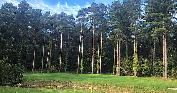 Bramshaw (Manor) Golf Course - 2nd approach