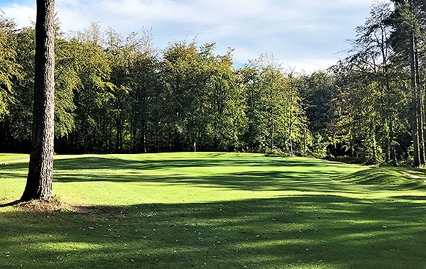 Bramshaw (Forest) Golf Course - 7th approach