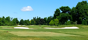 Buffalo, Country Club of, Golf Course - Photo by reviewer