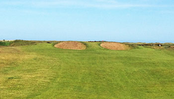 Carnoustie (Championship) Golf Course - Photo by reviewer