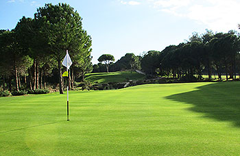 Cornelia (Prince) Golf Course - Photo by reviewer