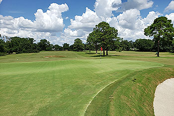 Country Club of Charleston Golf Course - Photo by reviewer