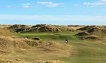 County Louth Golf Course - Photo by reviewer