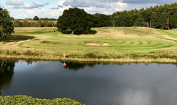 Delamere Forest Golf Course - Photo by reviewer