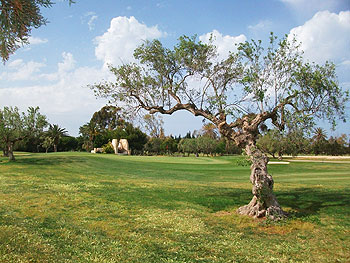 El Kantaoui (Panorama) Golf Course - Photo by reviewer