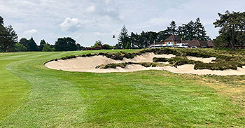 Ferndown (Old) Golf Course - Photo by reviewer