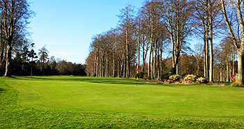 Forest Pines (Forest & Pines) Golf Course - Photo by reviewer