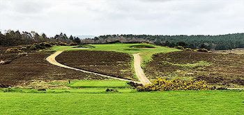Hankley Common Golf Course - Photo by reviewer