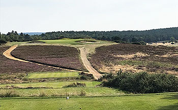 Hankley Common Golf Course - 7th hole - Photo by reviewer