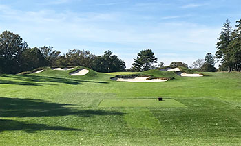 Hollywood Golf Course - Photo by reviewer