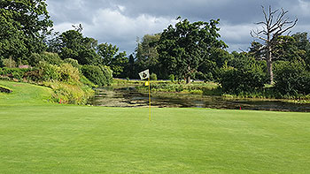 K Club (Palmer) Golf Course - Photo by reviewer