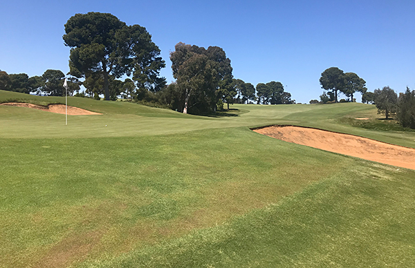 Kooyonga Golf Course - Photo by reviewer