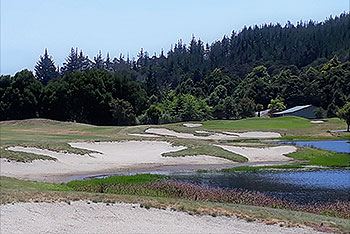 Lakes - Pauanui Golf Course - Photo by reviewer