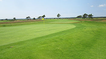 Ljunghusen (1-18) Golf Course - Photo by reviewer