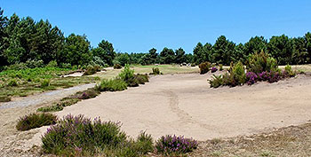 Medoc (Vignes) Golf Course - Photo by reviewer