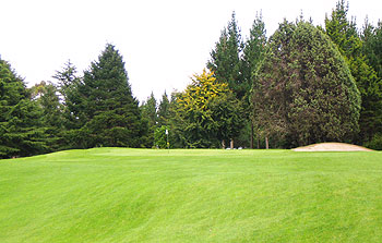 Napier Golf Course - Photo by reviewer
