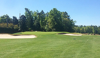 Palmetto Golf Course - Photo by reviewer