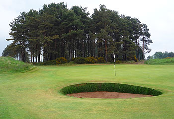 Panmure Golf Course - Photo by reviewer