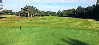 Piltdown Golf Course - Photo by reviewer