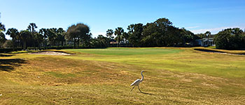 Ponte Vedra (Ocean) Golf Course - Photo by reviewer