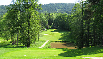 Regensburg Golf Course - Photo by reviewer