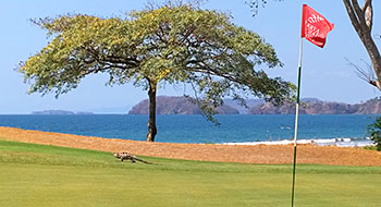 Reserva Conchal Golf Course - Photo by reviewer