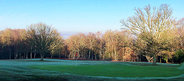 Royal Ashdown Forest (West) - 11th Green