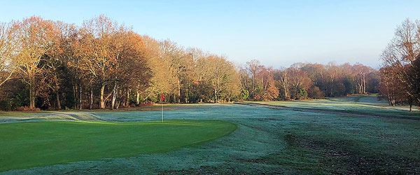 Royal Ashdown Forest (West) - 7th