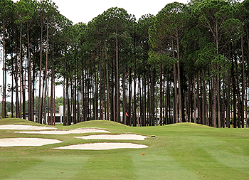 Sanctuary Cove (Pines) Golf Course - Photo by reviewer