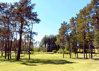 Stavanger Golf Course - Photo by reviewer