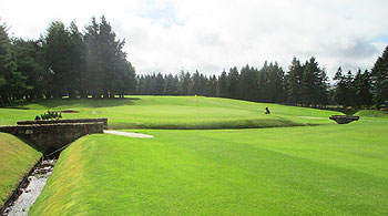 Strathaven Golf Course - Photo by reviewer