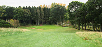 Strathmore (Rannaleroch) Golf Course - Photo by reviewer