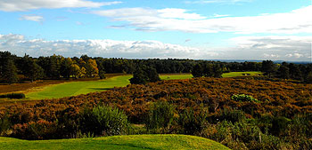 Sunningdale (New) - Photo by Graham