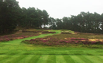 Sunningdale (Old) Golf Course - Photo by reviewer